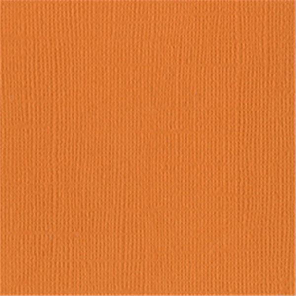 Apricot - 309009