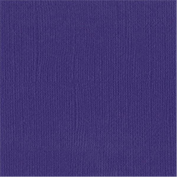 Purple - 309044