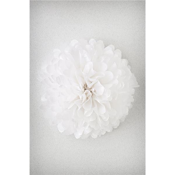 Pompon blanco m 35cm - POMPON-BLANC